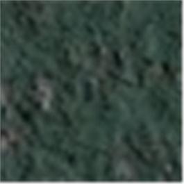 Caran d'Ache Pastel Pencil 719 Dark Phthalo Green thumbnail