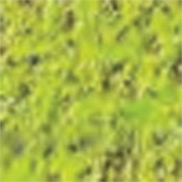 Caran d Ache Pastel Cube 232 Moss Green 10% thumbnail