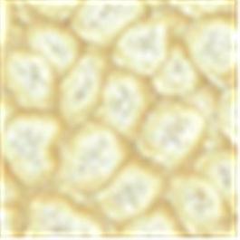 Pebeo Fantasy Prisme Paint 45ml Eggshell White thumbnail