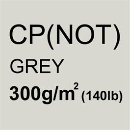 Tinted Bockingford GREY 300gsm (140lb) 30x22inches thumbnail