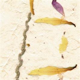 Handmade Narish Flower Paper 51x76cm 50gsm thumbnail
