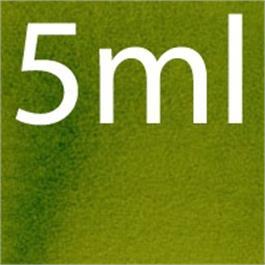 5ml - Daniel Smith Watercolour Sap Green S2 thumbnail