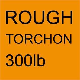 Arches Aquarelle ROUGH 640gsm (300lb) 22x30inches thumbnail