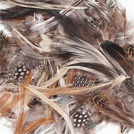 Natural Spotted Feathers thumbnail