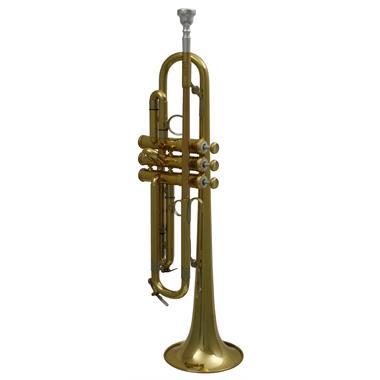 AMR Custom B flat trumpet (lacquer) thumbnail
