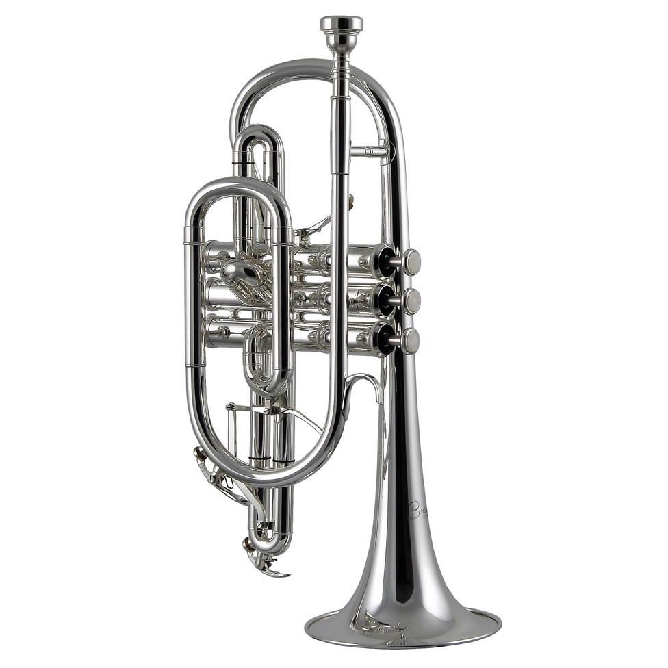 Catelinet CCR15S (silver)