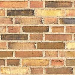 D38 - Facing Bricks image