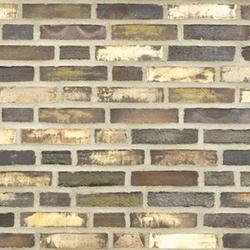 D49 - Facing Bricks image