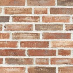 D46 - Facing Bricks image