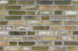 D42 - Facing Bricks image