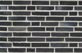 D55 - Facing Bricks image