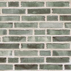 D54 - Facing Bricks image