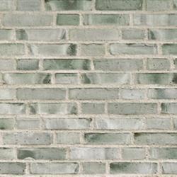 D51 - Facing Bricks image