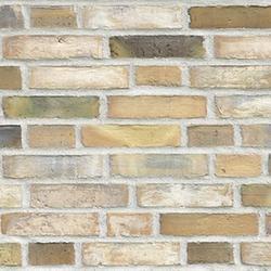 D78 - Facing Bricks image