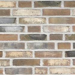 D76 - Facing Bricks image