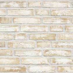 D71 - Facing Bricks image