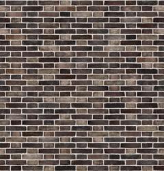 D199 - Facing Bricks image
