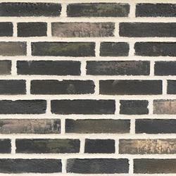 D99 - Facing Bricks image