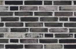 D97 - Facing Bricks image