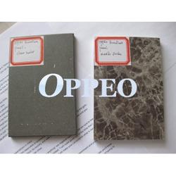 Oppeo econatura panel, one kind pre-finished fiber cement board, which have been popular in Europe market for 20 years, it is very good panel after glass facade, Alu. facades, ACP, Natural Stone, Wood panel....