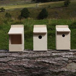 Bird Box Kit image