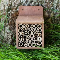 Bee House image