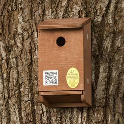 Tree Sparrow Nest Box image
