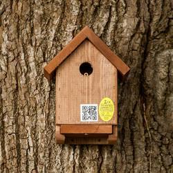 Apex Bird Box image