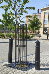 The Imperial Tree Guard is manufactured from mild steel bars which are electroplated and finished in black gloss paint. They can be used in conjunction with any Imperial Tree Grilles....