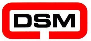 DSM Industrial Engineering Ltd