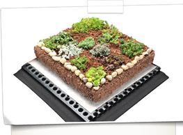 Plug Planted System image