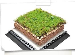 Hydroplanted System image