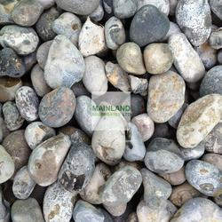 40mm Lydd Beach Oyster Pebbles image