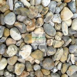 20mm Lydd Beach Oyster Pebbles image