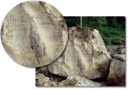 Wealden Sussex Sandstone Feature Stones image