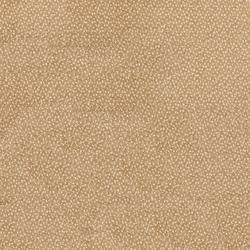 Zeta Tech - Carpets image