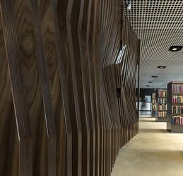 Vahle Bespoke internal Doors image
