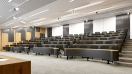 Collaborative Wave - Lecture Theatre Seating image
