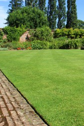 This mixture now benefits from the inclusion of the shade tolerant SUPRANOVA Poa supina that also tolerates wear. These properties make A6 ideal for problem shade areas under trees and building surrounds. Use a pre–seed fertiliser prior to sowing to provide ...