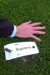 The perfect mixture for shaded golf tee's or any extremely shaded areas on golf courses or in sports stadia.  Includes SUPREME Poa supina, this mixture is extremely shade tolerant and offers exceptional wear tolerance once established.  SUPREME is a new impr...