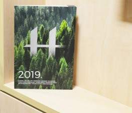 Hanson Plywood 2019 Product guide