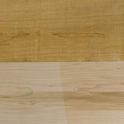 Maple - Timber image