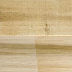 Poplar - Timber image