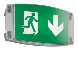 i-P65 Bulkhead LED Emergency Light and Exit Sign image