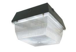 BEDFORD LED Car Park / Amenity Light image