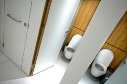 The Flush washroom cubicle range is one of TBS' most highly regarded premium cubicle systems. It is perfect for specifiers looking for a completely flush and almost seamless cubicle façade for their washroom design.  The specifier has three distinct options...