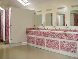RECYCLOO - Toilet Cubicles image