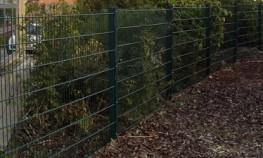 DUO8 - Fencing image