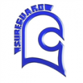 Sureguard Window Films logo