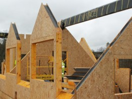 Stylite Roof Structural Insulated Panels (SIPs) image